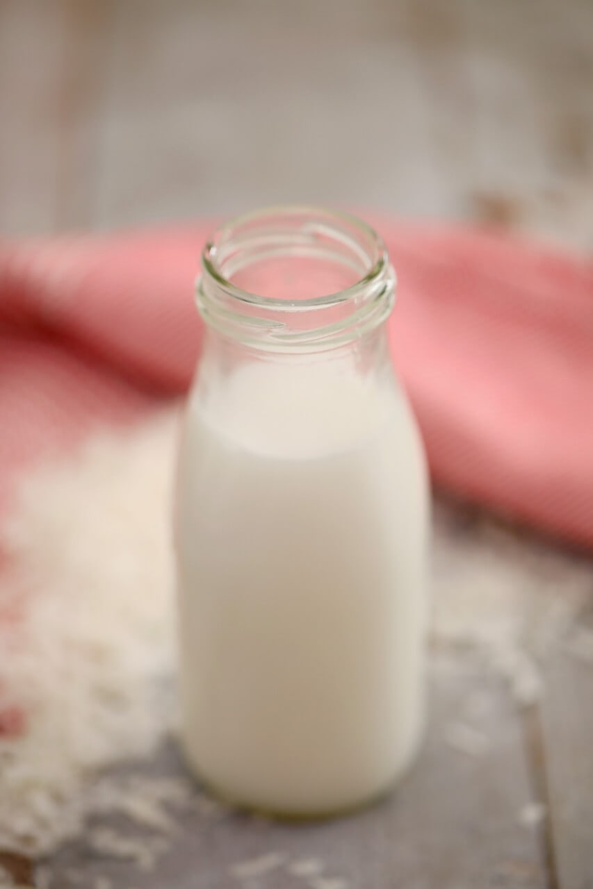 How to make Non-Dairy Milk,How to make Non Dairy Milk, how do you make plant milk, How to make Dairy free Milk, Plant based milks, how is plant milk made, How to make Almond milk, How to make coconut milk, how to make cashew milk, How do you make nut milk, almond milk recipe, coconut milk recipe, cashew milk recipe