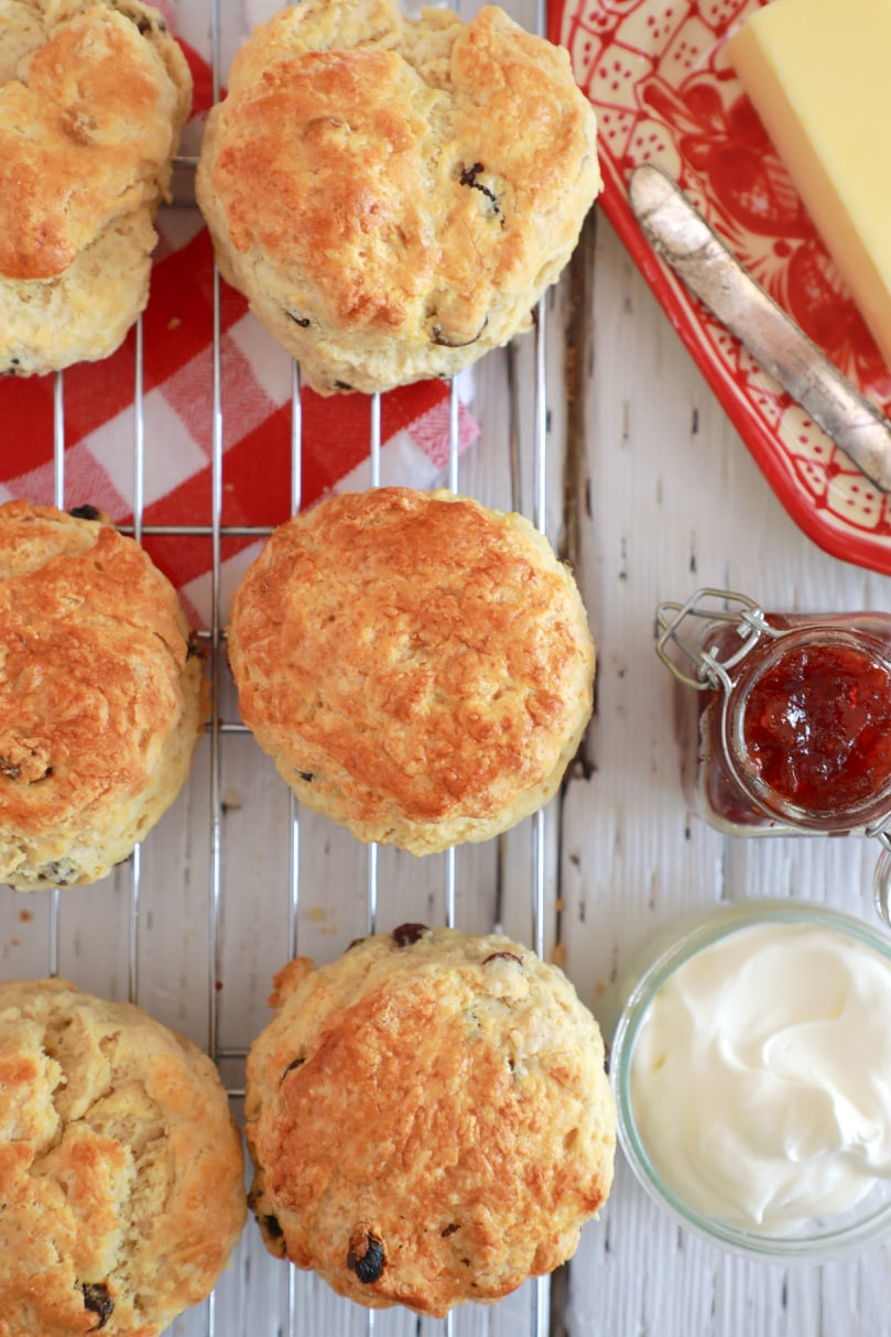 Top-down view of a batch of my traditional, Best Irish Scones recipe.