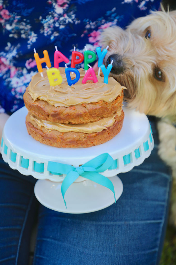 Excellent Dog Birthday Cake Recipe For Your Furry Friend Bigger Bolder Baking Personalised Birthday Cards Sponlily Jamesorg